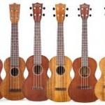 guitar squiggle1