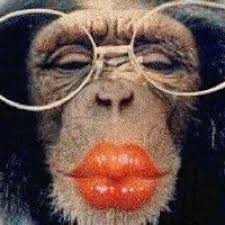 monkey-smooches