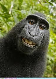 monkey-smiling